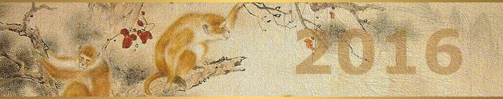 DAO-rok ohnivej opice-2016-Song Bai