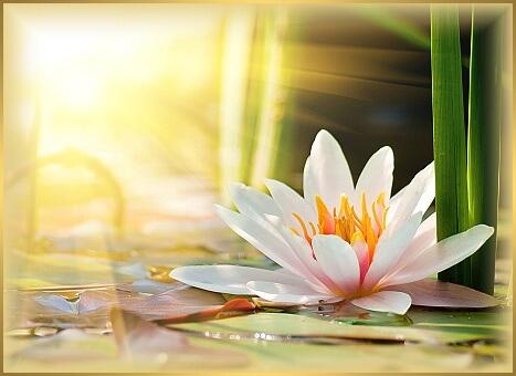 deň bohyne kvetov-1