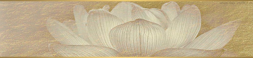 dao-dharma