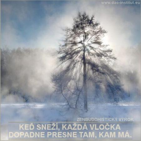 sneh_01