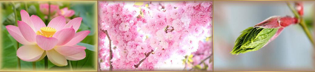 jarná rovnodennosť-chun fen-bohyňa kvetov