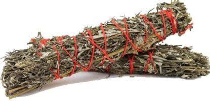 palina-wormwood-artemisia