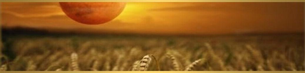 čínsky lunárny mesiac úrody-harvest-moon-festival