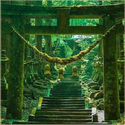 dao-dharma-23-10-kumamoto-japan