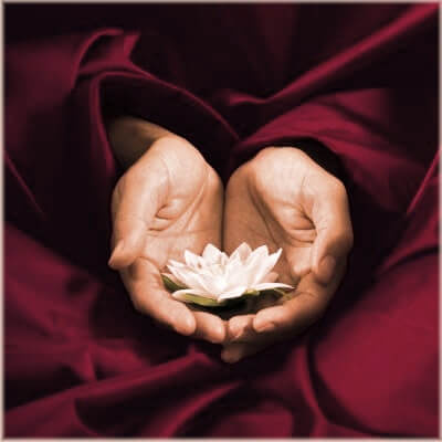 dao-dharma-lotus-hands