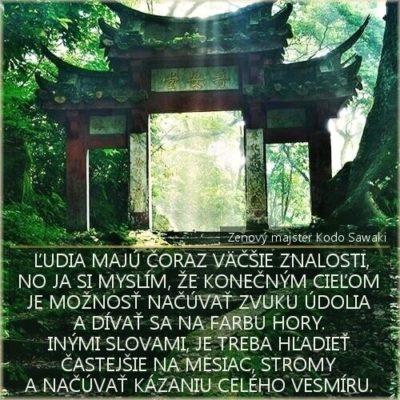 dao-dharma-zen